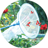 Elastic Insect Catcher Net