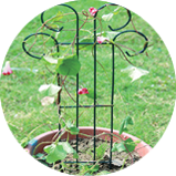 Wire Flower Trellis